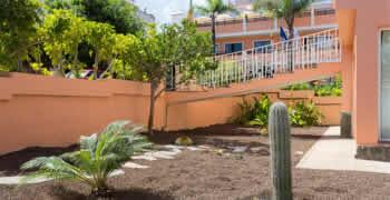 Desertscape palm springs ca chop chop landscaping for Palm springs landscape design